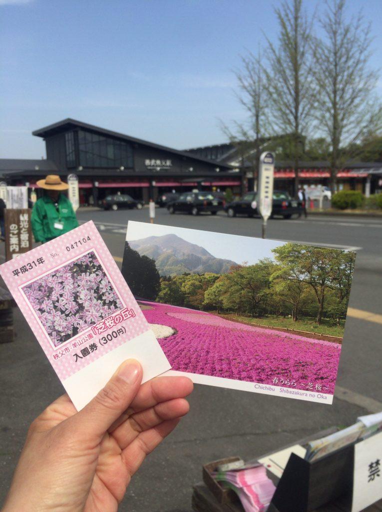 芝桜チケット
