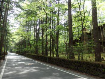 軽井沢林道