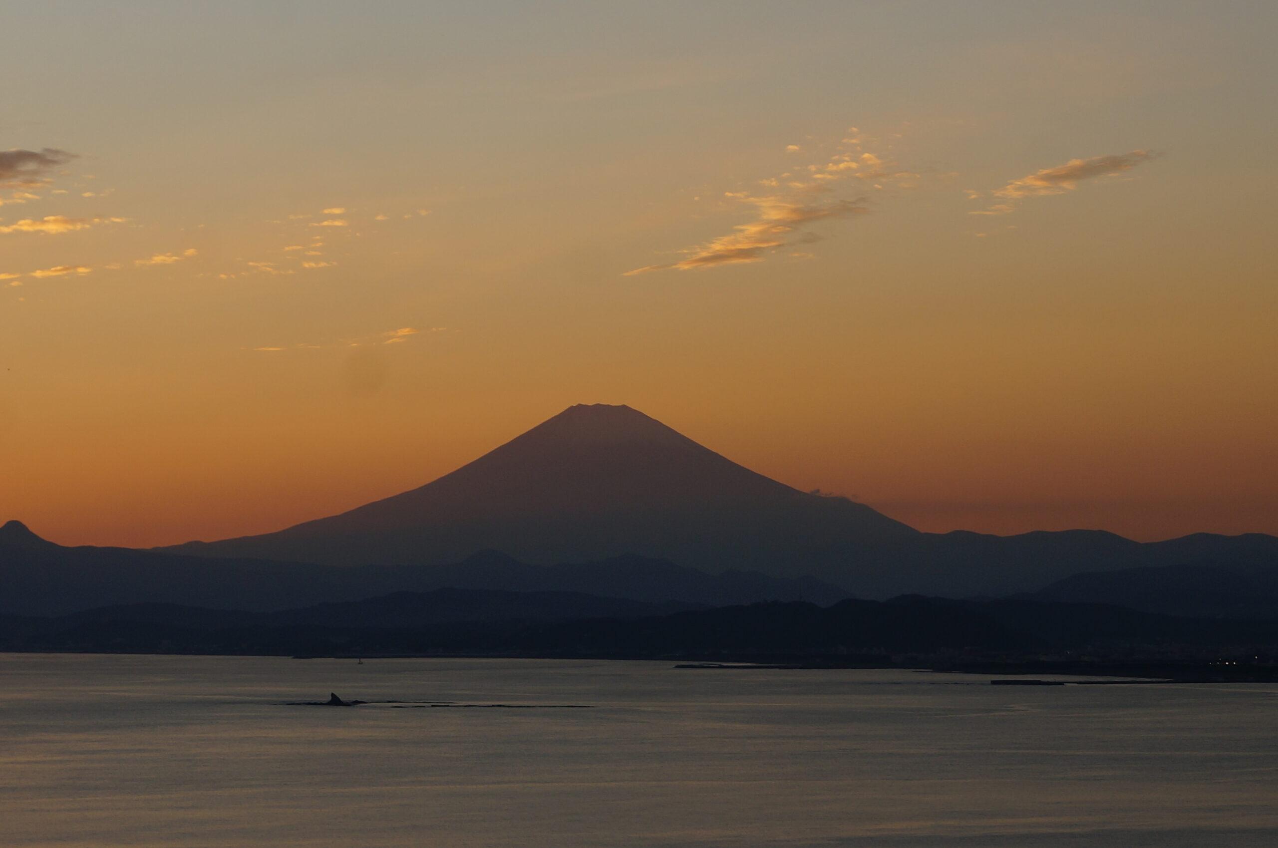 富士山アイキャッチ