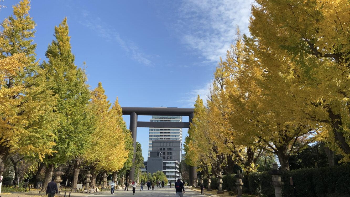 靖国神社銀杏並木