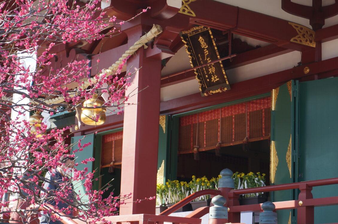 亀戸本殿6