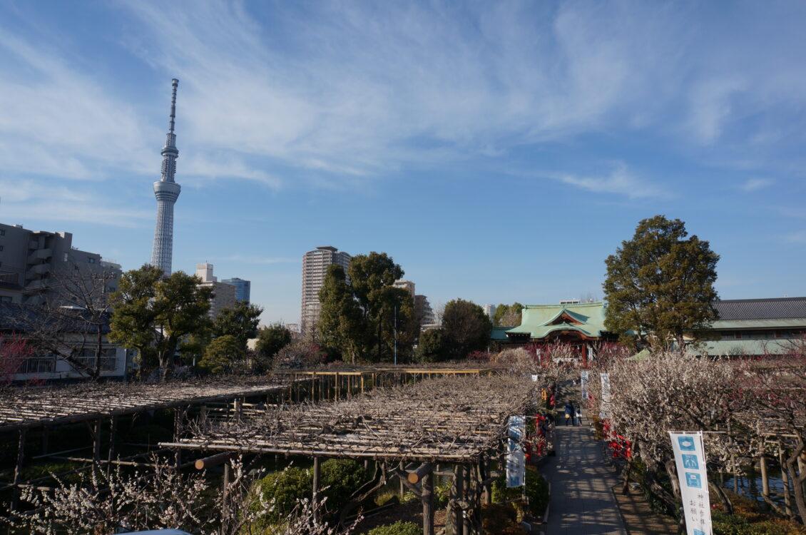 亀戸富士だなスカイツリー