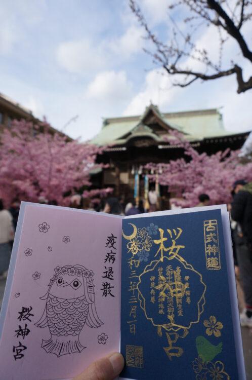 桜神宮御朱印3