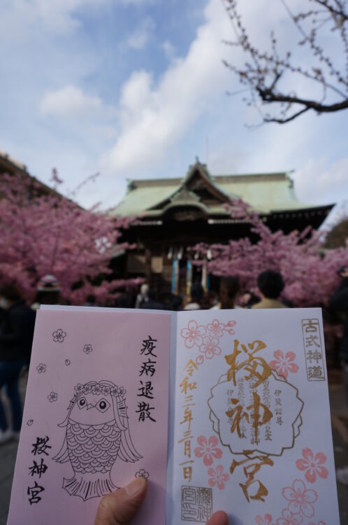 桜神宮御朱印2